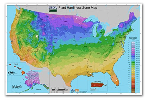 USA Plant Hardiness Zone MAP - measures 36