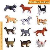 Hunson Mini Cat Dog Figurines (12 PCs) Realistic Looking Cat Kitten Figures Puppy Dog Figures...