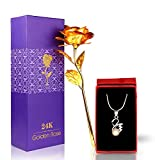 TiedRibbons Special Valentine's day gift for girl Girlfriend Wife Women Her Lover Combo Pack(Pendant with Neck Chain and 24K Gold Plated Rose with Heart Shaped Photo Frame)