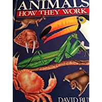 Animals: How They Work