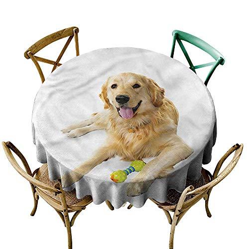 familytaste Golden Retriever,Natural Tablecloth Pet Dog Toy D 60