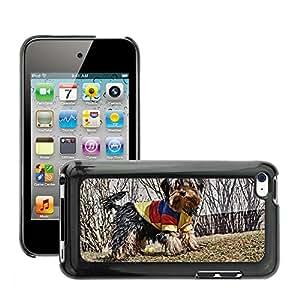 Etui Housse Coque de Protection Cover Rigide pour // M00108074 Yorkshire del perro Animales Cachorros // Apple ipod Touch 4 4G 4th