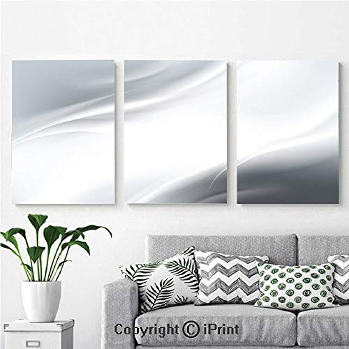- Modern Salon Theme Mural Abstract Framework with Ombre Inspired Design Corners Wavy Lines Modern Print Decorative Painting Canvas Wall Art for Home Decor 24x36inches 3pcs/Set, Grey Silver White