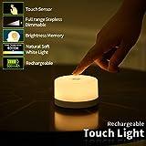 FC-Fancier Dimmable Light,Touch Sensor Bedside Lamp, Kids Children Adult Nightlight,Bedroom Living Room Baby Nursery…