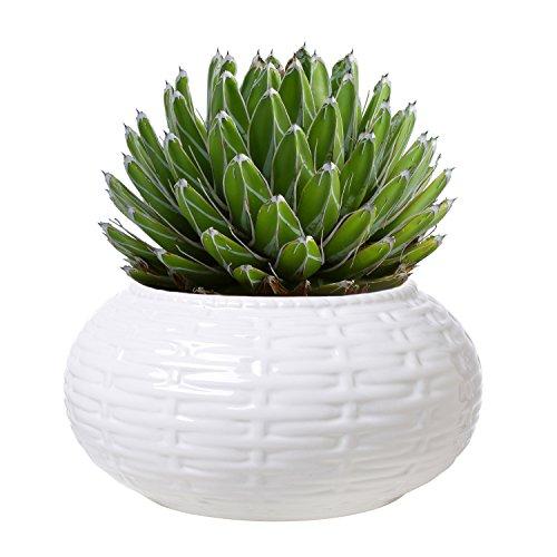 6 Inch Round White Woven Basket Pattern Ceramic Succulent Planter Pot