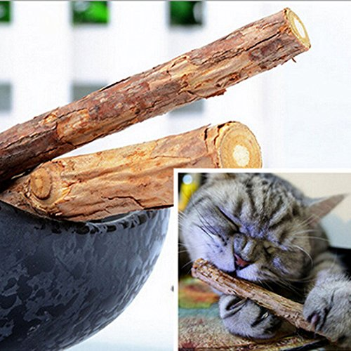 Cat Chew Sticks - Cat Stick Snack - 5PCS Cat cleaning teeth Pure natural catnip pet cat molar Toothpaste stick silvervine actinidia fruit Matatabi cat snacks sticks -Chew Sticks For Cats (Federal Bar Halloween)