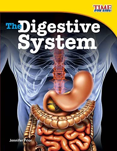 Teacher Created Materials - TIME For Kids Informational Text: The Digestive System - Grade 3 - Guided Reading Level P