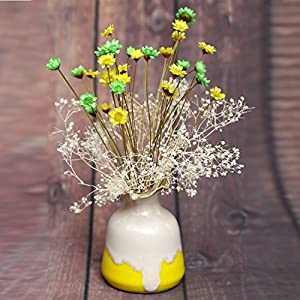 100 Stems Natural Dry Flowers Brazilian Small Star Daisy Decorative Dried Flowers Mini Daisy Chamomile Bouquet for Wedding Floral Arrangements Home Decorations (Autumn Color) 4