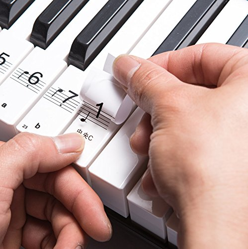 hengshengr-transparent-plastic-removable-piano-and-keyboard-note-stickers-up-to-88-key-set-for-the-b
