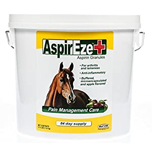 AspirEze+ Pain Relief for Horses 1