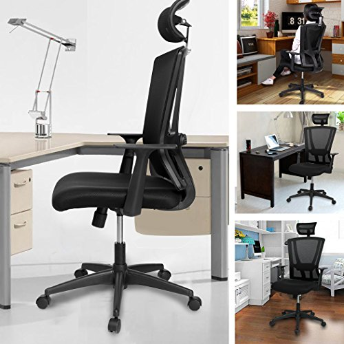 Modrine High Back Ergonomic Mesh Office Chair with Headrest & Armrest for Home Office and Conference Room (Black)
