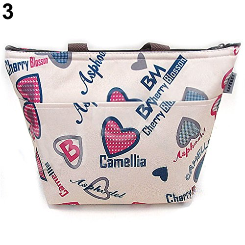 Saefana Thermal Travel Picnic Lunch Tote Waterproof Insulated Cooler Carry Bag 3