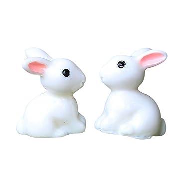 pflanzen für kaninchen