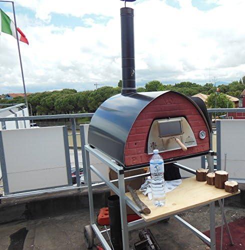 Horno de Leña de 4 pizzas pizzone: Amazon.es: Jardín