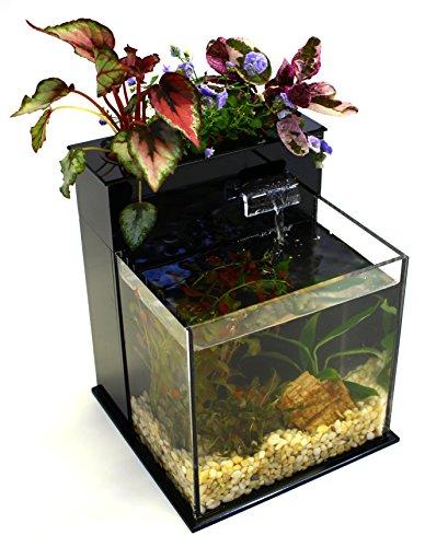 51PhW1sfV4L - Fin to Flower Aquaponic Aquarium Mini System A