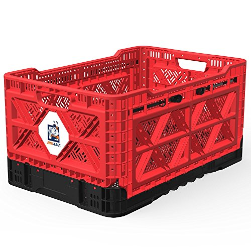 BIGANT Heavy Duty Collapsible & Stackable Plastic Milk Crate - IP543630, 12.7 Gallons, Medium Size, Red, Set of 1, Snap Lock Foldable Industrial Garage Storage Bin Container Utility Tote Basket