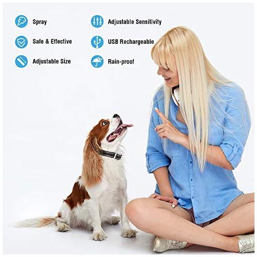 SOYAO Anti Barking Dog Collars, Automatic Bark Collar with Citronella Spray, Barking Collar with Adjustable Sensitivity… Health and Household dog training