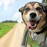 Jovitec 12 Pieces Dog Tag Clips Pet Tag Rings Dog