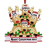 2017 Reindeer Family Hand Personalized Christmas Ornament - Family of 4 (With 2 Children)