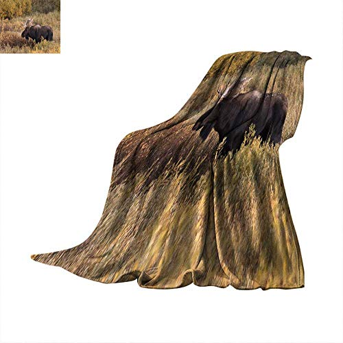 Angoueleven Degrees of Comfort Weighted Blanket Autumn Bull Moose in Willows Tetons NP Wyoming Throw Blanket 50
