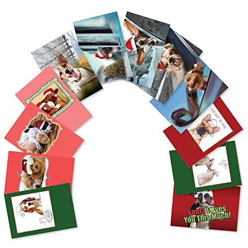 12 Boxed 'Puppy Holidays' Assorted Merry Christmas Cards w/ Envelopes - Images of Cute Breeds of Dogs Wearing Santa Hats - 12 Different Happy Holidays and Seasons Greetings Gifts A5642XSG-B1x12