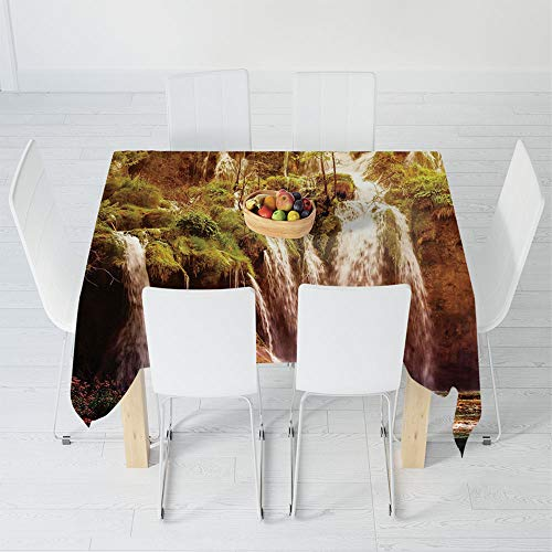 Custom Tablecloth,Nature Decor,for Home & Office & Restaurant Table Tea Table,30.3 X 28.3 Inch,Waterfall Forest Tree Moss Lake Stones Rocks