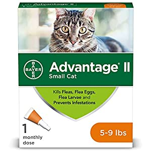 Bayer Advantage II Flea Prevention for Small Cats, 5-9 lbs 3