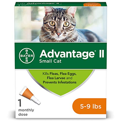 Flea Prevention for Cats, over 9 lb, 1 dose, Advantage II