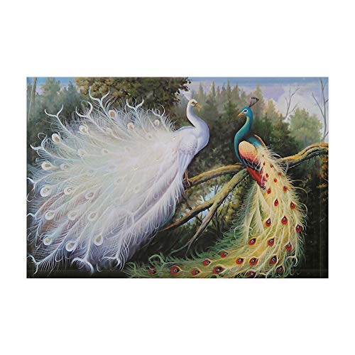 DYNH Peacock Doormat Feather, Classical Peacock Standing On Forest Tree Branches Asia Chinese Painting Bath Rugs, Flannel Non-Slip Bath Mats 15.7x23.6in Floorcover Accessorie ()