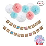 Festivous Wishel Gender Reveal Party Decoration Boy or Girl Banner,Paper Pom Poms Set for Baby Shower Baby Shower Party,Newborn Baby Celebration