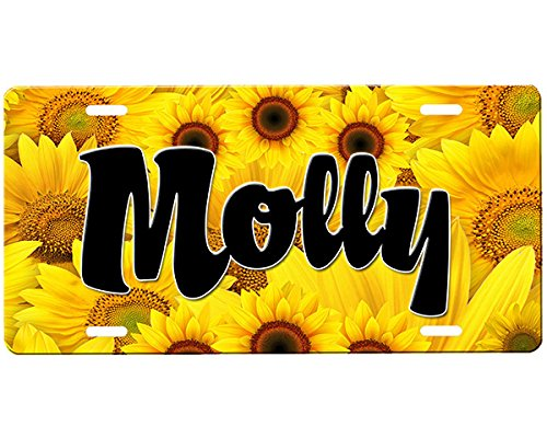 Airbrushed Car Tag (Sunflower License Plate)