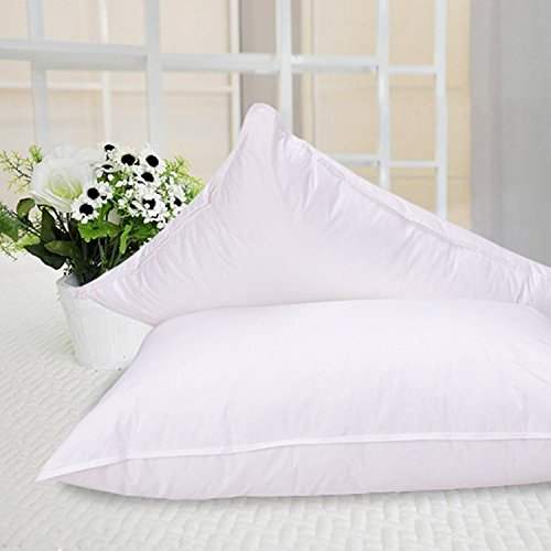 Set of 2 Premium 100% Down Pillows - 550 Fill Power (26oz.) - White Goose Down Sleeper - 100% Egyptian Cotton Shell - Queen Size, 20 x 30-inch – 400 Thread Count - Proudly Made in The USA
