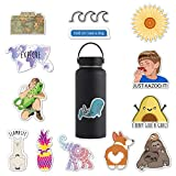 (14 Pack) Cute Stickers for Teens, Girls, Women - Brandy Melville and Laptop Stickers, Premium Cute Stickers for Water Bottles, Hydro Flask Stickers, Waterbottle Stickers by RipDesigns (Series 1)