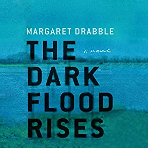 The Dark Flood Rises Audiobook