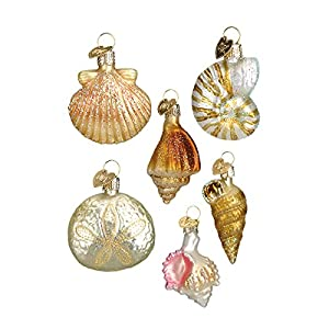 51PiA-XDjfL._SS300_ 100+ Best Seashell Christmas Ornaments