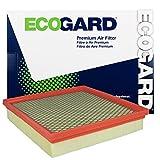 ecogard xa6151Motor Premium Filtro de aire para Dodge Journey/Chrysler 200/Dodge Avenger
