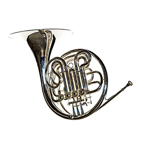 RS Berkeley FR806 Artist Series Double Horn by RS Berkeley