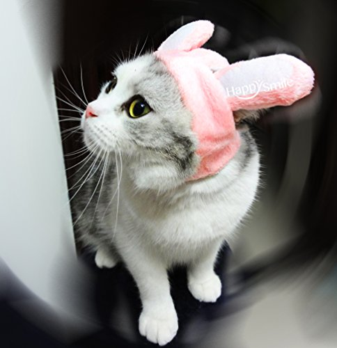 Best Bunny Rabbit Pet Hat Costume for Cats & Small Dogs Funny Pet Cosplay Costume with Stuffed Ears (Bunny Pink, M)