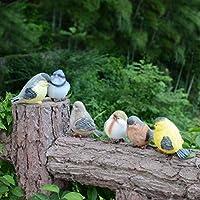 Miniatura Adornos, teckpeak 6pcs pájaros de resina en miniatura jardín de hadas adornos adornos de jardín decoraciones interiores: Amazon.es: Hogar