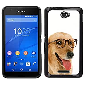 // PHONE CASE GIFT // Duro Estuche protector PC Cáscara Plástico Carcasa Funda Hard Protective Case for Sony Xperia E4 / Labrador Retriever Golden Glasses Dog /
