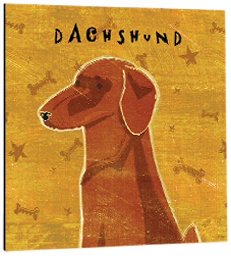 3.5-Inch Tree-Free Greetings 61054 Premium Square Eco Magnet Red Dachshund
