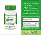 Organic Camu Camu Berry Supplement 500mg x 100 Vegan Capsules - Natural Vitamin C - Fresh Harvest from Peru (1-Pack)