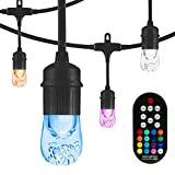 Enbrighten Classic Seasons LED Warm White & Color Changing Café String Lights, Black, 24ft, 12 Premium Impact Resistant Lifetime Bulbs, Wireless, Weatherproof, Indoor/Outdoor, Commercial Grade, 36134