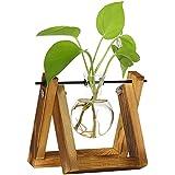 VICOODA 水耕栽培花瓶 ガラス花瓶 木製枠 植物ポット 木製 スタンド ミニ観葉植物 (A, 1)
