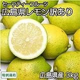 【訳あり】広島県レモン 3kg 農薬使用無 (広島県 セーフティフルーツ) 産地直送