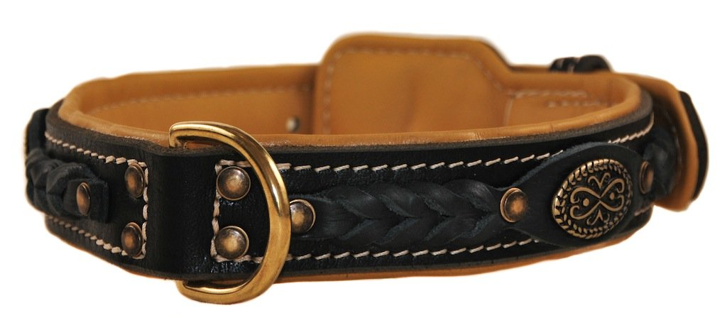Dean and Tyler  DEAN'S LEGEND  Dog Collar With Brown Padding Solid Brass Hardware Black Size 51cm x 4cm Width. Fits neck size 18 Inches to 22 Inches.