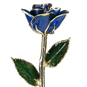 Allmygold Jewelers Sapphire Blue Laquered Platinum Long Stem Genuine Rose In Gift Box 19