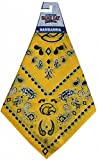 Game Day Outfitters NCAA Southern Mississippi Golden Eagles Team Color Bandana