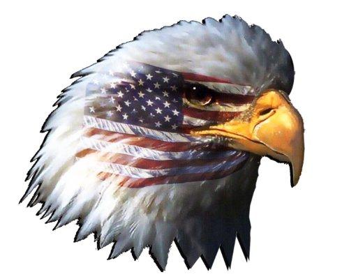 (Nostalgia Decals American Flag Eagle Head Large 8