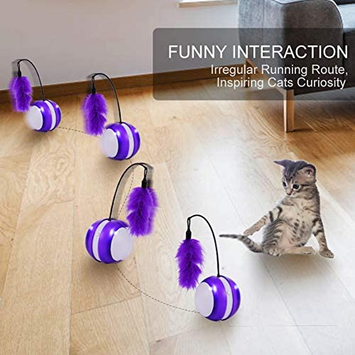 Smart Cat Toys Interactive, Automatic Cat Toy Ball Interactive Cat Toys for Indoor Cats, Best Electronic Feather Cat Toys Ball with Light for Cats, Cats Exercise/Companion Toy Ball by Tiitc 4